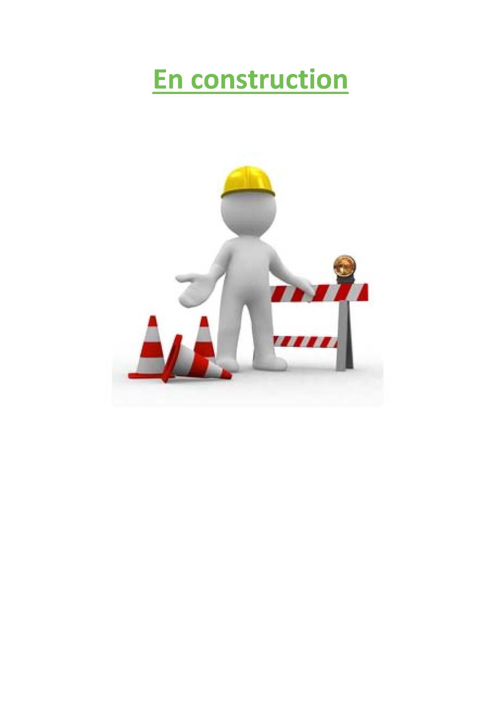 Faisabilité_button_En_construction